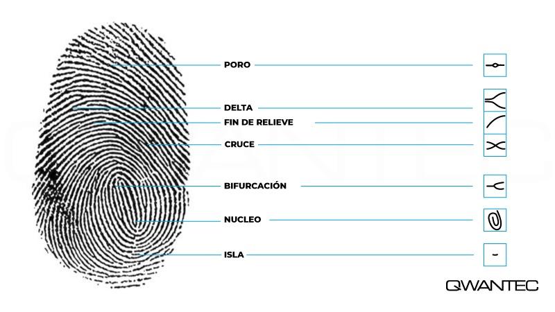 huella dactilar y control de asistencia